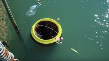 A Seabin in the water.