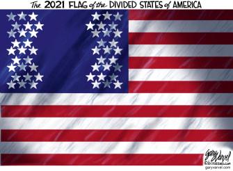 Editorial Cartoon U.S. United States division flag