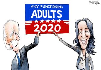 Political Cartoon U.S. Kamala Harris Joe Biden Vice President Any Functioning Adults 2020