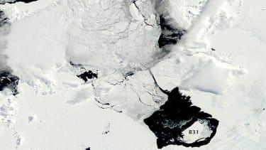 Gigantic iceberg breaks off from Antarctic glacier