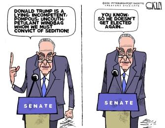 Political Cartoon U.S. schumer trump impeachment