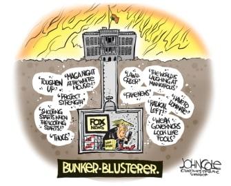 Political Cartoon U.S. Trump bunker George Floyd protests