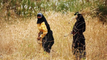 Iraq accuses ISIS of stealing grain