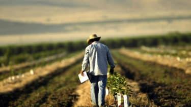 A farmer working land.
