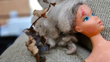 Abandoned Barbie