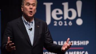 Jeb Bush criticizes Trump Cinco de Mayo tweet.