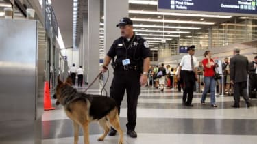 Police dog in O'Hare airport.
