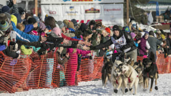 Photos: A howling good time at the Iditarod