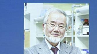 Yoshinori Ohsumi wins 2016 Nobel Prize for medicine