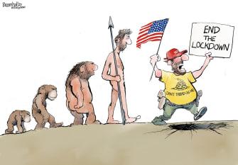 Political Cartoon U.S. end lockdown human evolution descends