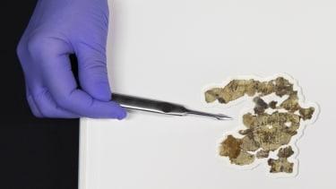 Dead Sea Scroll fragments.