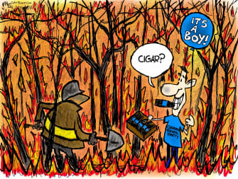 Editorial Cartoon U.S. gender reveal California wildfire