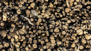 A plastic replacement may be found in wood.