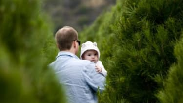 A family shops at an Orange County, Calif., Christmas tree farm: Americans are expected to spend 3.1 percent more on trees this year than they did in 2010.