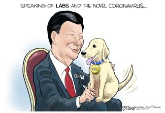Political Cartoon World Xi Jinping WHO coronavirus China