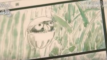 A clip of Boro The Caterpillar.