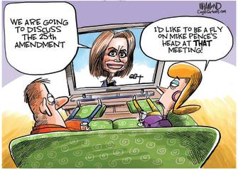 Political Cartoon U.S. Pelosi Trump 25th Amendment Pence fly