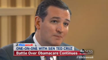 Ted Cruz fantasizes that Democrats might help him repeal 'every single word' of ObamaCare