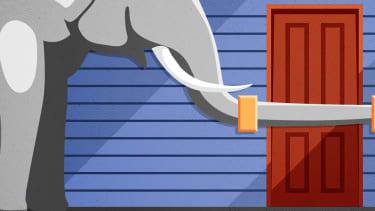 An elephant barring a door.