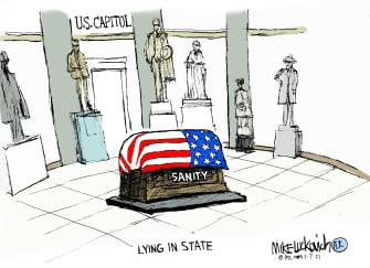 Political Cartoon U.S. Trump Congress riot