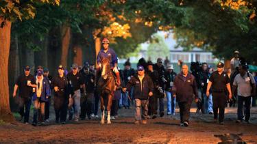On the eve of Belmont, a Triple Crown hopeful waits