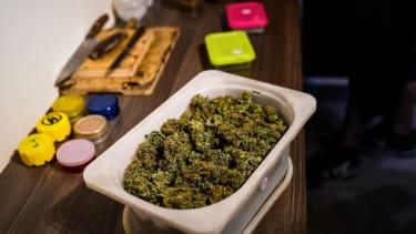 Washington made $600,000 auctioning off 300 pounds of marijuana