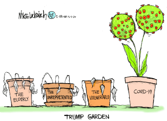 Political Cartoon U.S. Trump Covid garden deaths