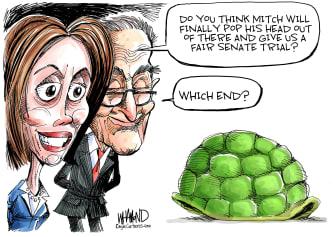 Political Cartoon U.S. Pelosi Schumer Mitch Turtle Shell Hiding Trump Impeachment