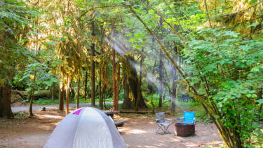 A Washington state campground.