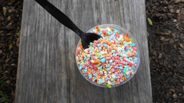 Sean Spicer has a problem with Dippin' Dots.