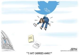 Political Cartoon U.S. neera tanden twitter