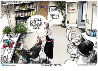 Political Cartoon U.S. Nancy Pelosi salon