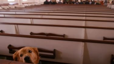 In the event the Rapture leaves Christians' pets untended, entrepreneurial atheists are ready to assist with post-apocalypse pet care.