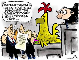 Political Cartoon U.S. trump impeachment chicken