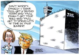 Political Cartoon U.S. Trump Pelosi jail