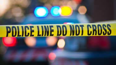 45 dogs dead in North Las Vegas fire