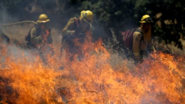 Firefighters tackle a controlled burn in CA