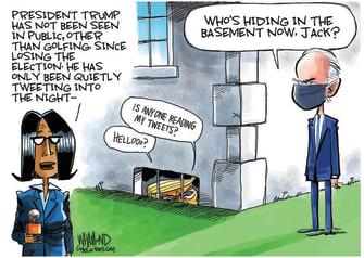 Political Cartoon U.S. Trump Biden basement