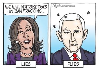 Political Cartoon U.S. Harris Pence debate fly