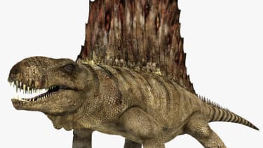 5 things you thought were dinosaurs but aren't