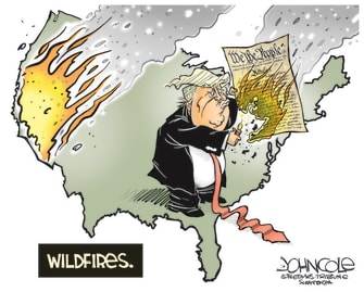 Political Cartoon U.S. Trump wildfires constitution