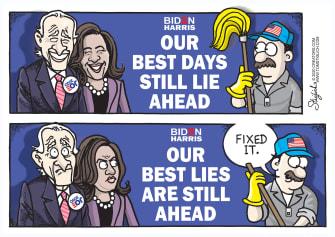 Political Cartoon U.S. Biden Harris 2020 lies