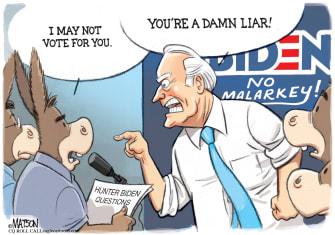 Political Cartoon U.S. Biden Damn Liar Voter Questions