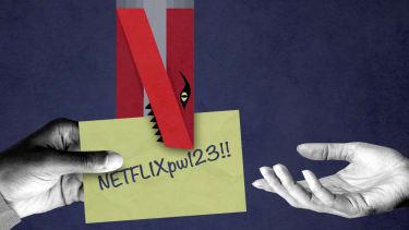Netflix eating a password.