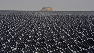 An army of solar panels.