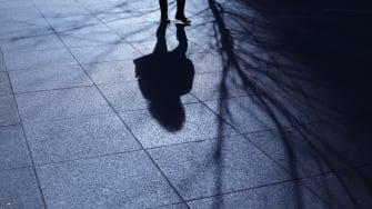 A human shadow.