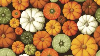 Gourd season already?!