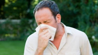 Allergies are getting worse, more people are inflicted by their symptoms, and the season is long and a new study links this temporary torture to climate change.