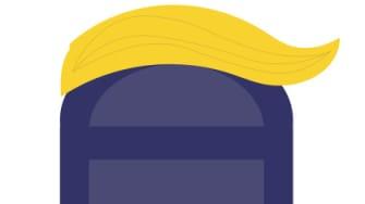President Trumps hair on a mailbox.
