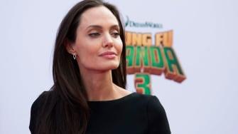 Angelina Jolie is now a professor.